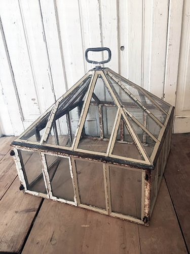 Victorian garden cloche / miniature greenhouse